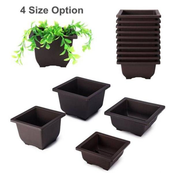 Bonsai, Plants, Flowers, householdplantnutritionpot