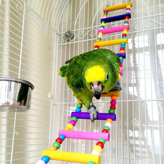 Toy, macaw, Parrot, for