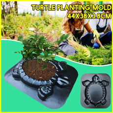 turtlemould, Turtle, Plants, Flowers