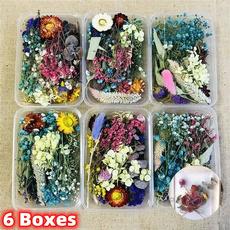 Beautiful, flowersampplant, Flowers, driedflowerbouquetgiftbox