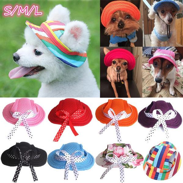Summer, petcap, puppycap, Pets