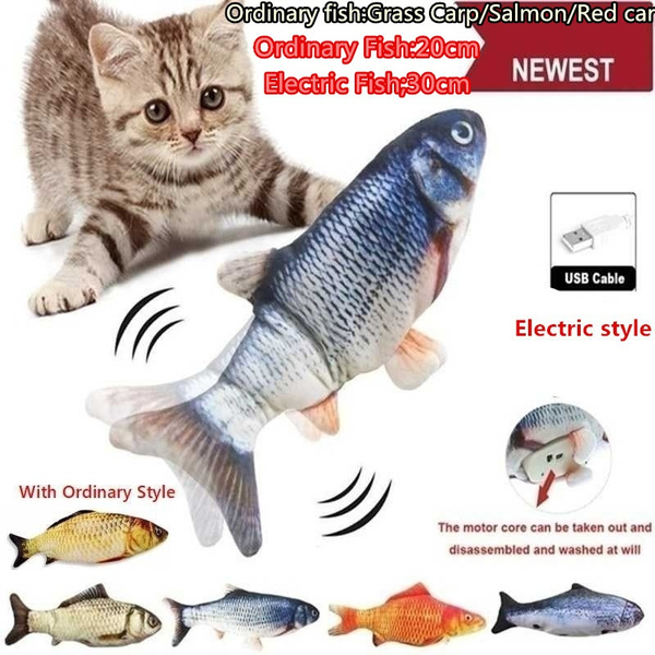Funny, cattoy, electricfish, catdancingfish