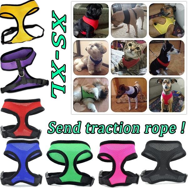 Vest, Dog Collar, leashfordog, Dogs