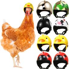 Helmet, chickenhelmet, pethelmet, Funny