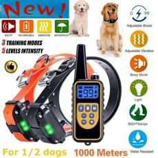 Fashion Accessory, Fashion, Dog Collar, Electric