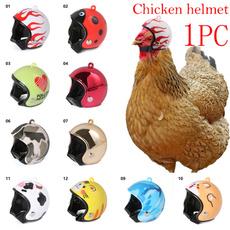 Funny, petcap, protectivehelme, Helmet