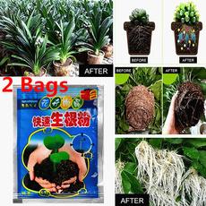 Bonsai, Heart, Plants, bonsaiseed