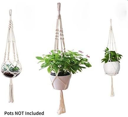 Indoor, Rope, Plants, Outdoor