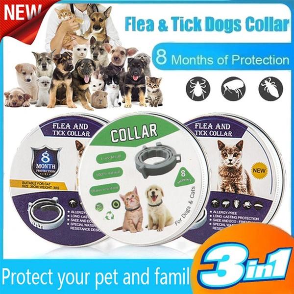 fleaandtickpreventionforlargedog, petdeworming, leashe, Pets