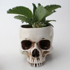 Flowers, Home Decor, skull, decorativeflowerspotsplanter