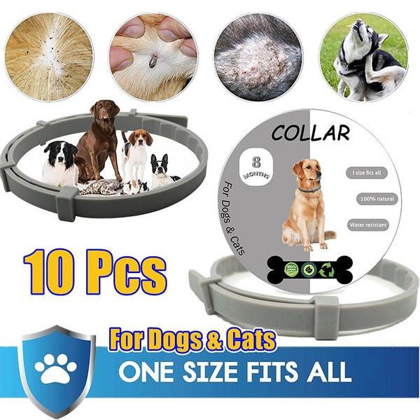 puppytie, Pets, dog&cat, petbell