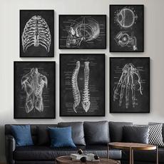 Muscle, Skeleton, Wall, Vintage