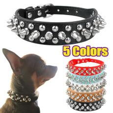 Dog Collar, rivetcollar, Dogs, Pets
