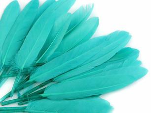 coloroflightturquoise, Turquoise, turquoiseturquoiseturquoise, duckfeatherlength