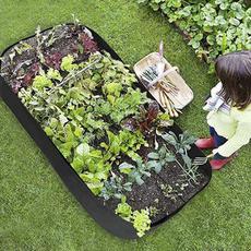 Plants, Flowers, Gardening, Garden
