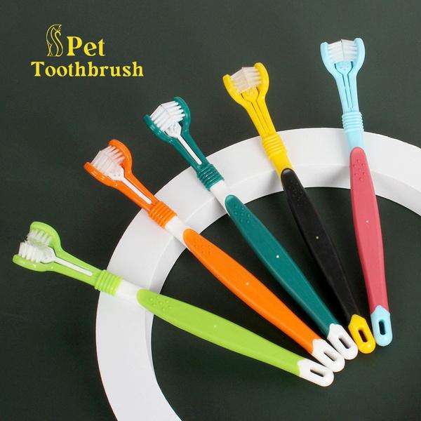 Cleaner, Head, Teddy, Pets