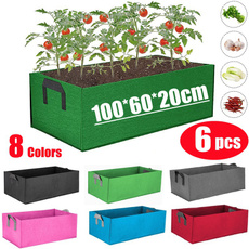 Box, Plants, Flowers, Garden