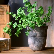 homedecoraccent, Flowers, artificialplant, Garden