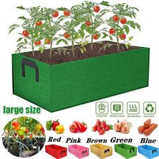 Bonsai, gardenbed, plantingpotvegetable, Garden