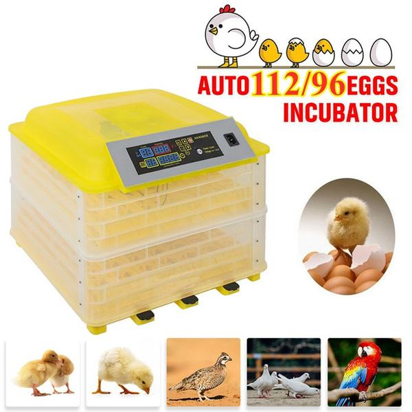 Yellow US Standard Mini Incubator.7-Egg Mini Practical Poultry ...