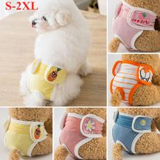 dog accessories, Underwear, Shorts, Dog Collar
