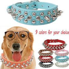 Medium, Dog Collar, petaccessorie, Colorful