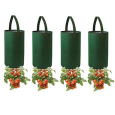tomato, Plants, Garden, Bags