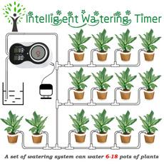 Home & Kitchen, Flowers, Gardening, Garden