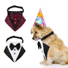 scarf, dogbucklecollar, Fashion, Dog Collar