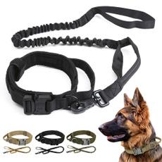 Heavy, Dog Collar, trainingdogcollar, collierdechien