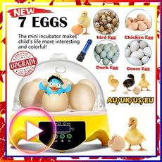 Mini, Kitchen & Dining, eggpoacher, eggmachine