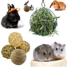 bunnytoyball, chewtoy, rabbit, Animal