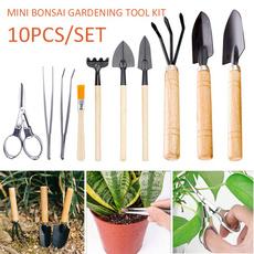 Bonsai, succulent, Plants, shovel