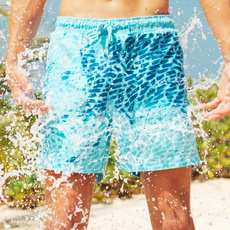 swimmingtrunksformen, Shorts, colorchanging, summer shorts