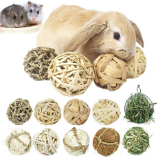 bunnytoyball, chewtoy, rabbit, Pets