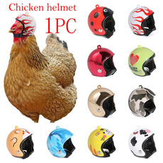 Helmet, chickhat, pethelmet, Funny