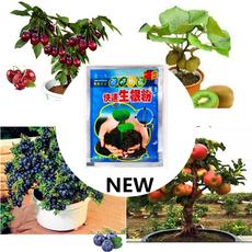 Bonsai, Plants, Home & Office, Garden