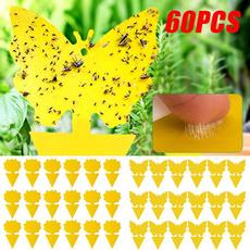 Outdoor, yellowflycatcher, flycatcheroutdoor, Gardening Supplies
