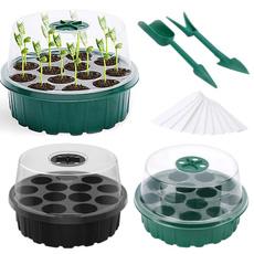 gardenplanting, Box, Plants, seedlingtray