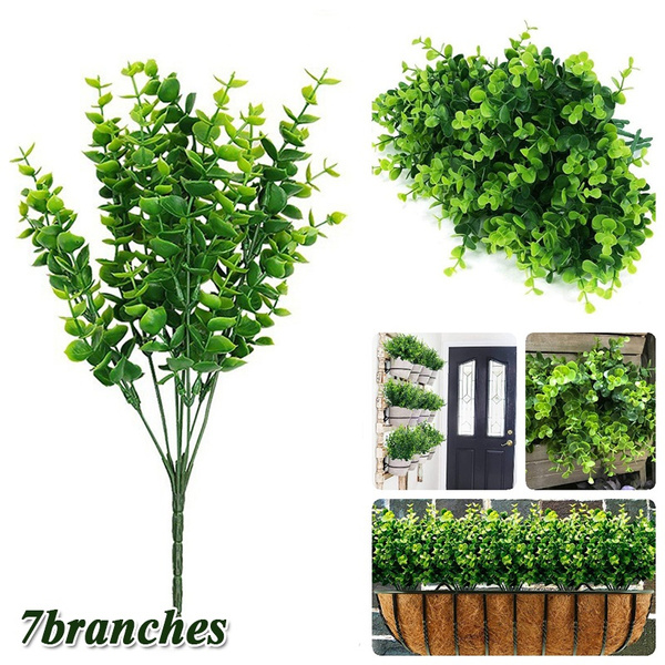 leaves, Plants, Outdoor, leaf