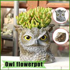 Owl, creativeflowerpot, Flowers, Office