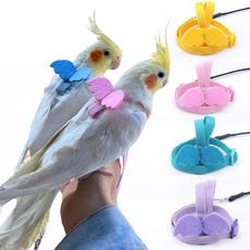 parrotharne, Outdoor, parrottrainingrope, birdleash