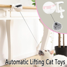 cattoy, Toy, Electric, puzzlestoy