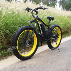 Bicycle, 500w, Electric, Sports & Outdoors