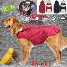 golden, bigdog, Outdoor, dog coat