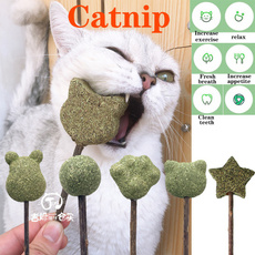 Funny, catsaccessorie, Toy, toothpastestick
