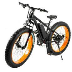 Steel, Mountain, Bicycle, Electric