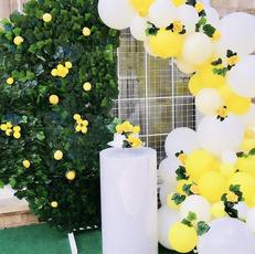 lemon, Garland, Balloon, sunshine