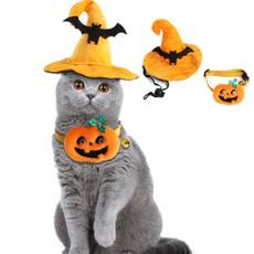 Bat, Fashion, pumpkinlamp, catcollar