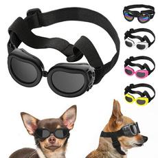 Summer, Fashion, eye, sunglassesdog